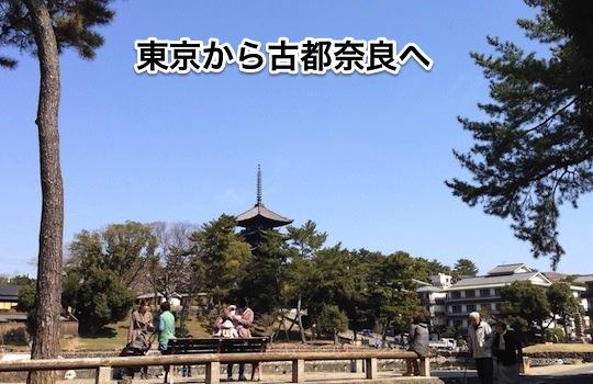 0391_1.jpg
